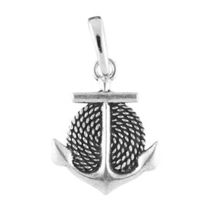Picture of Silver Anchor Droplet